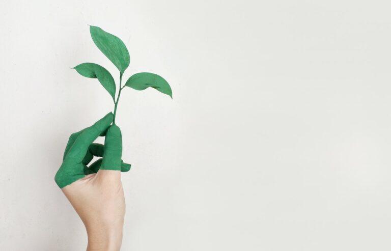Gebäudereinigung und Umweltschutz: Geht das überhaupt?