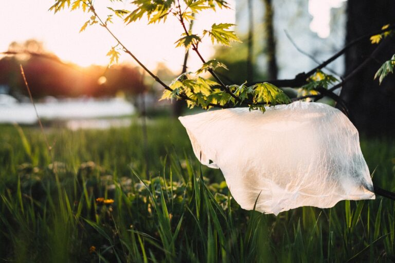 Wie man Mikroplastik vermeiden kann